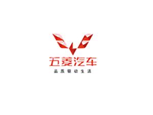 普电合作客户-五菱汽车
